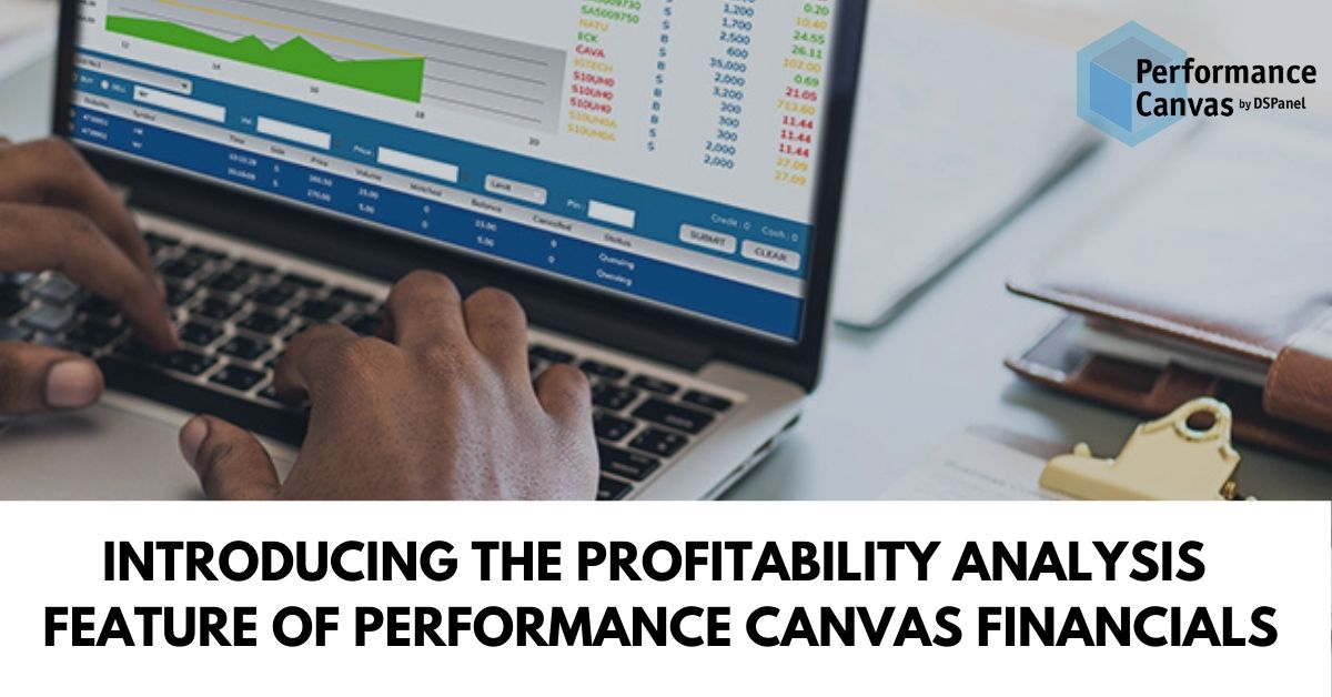 profitability add-on feature of performance canvas
