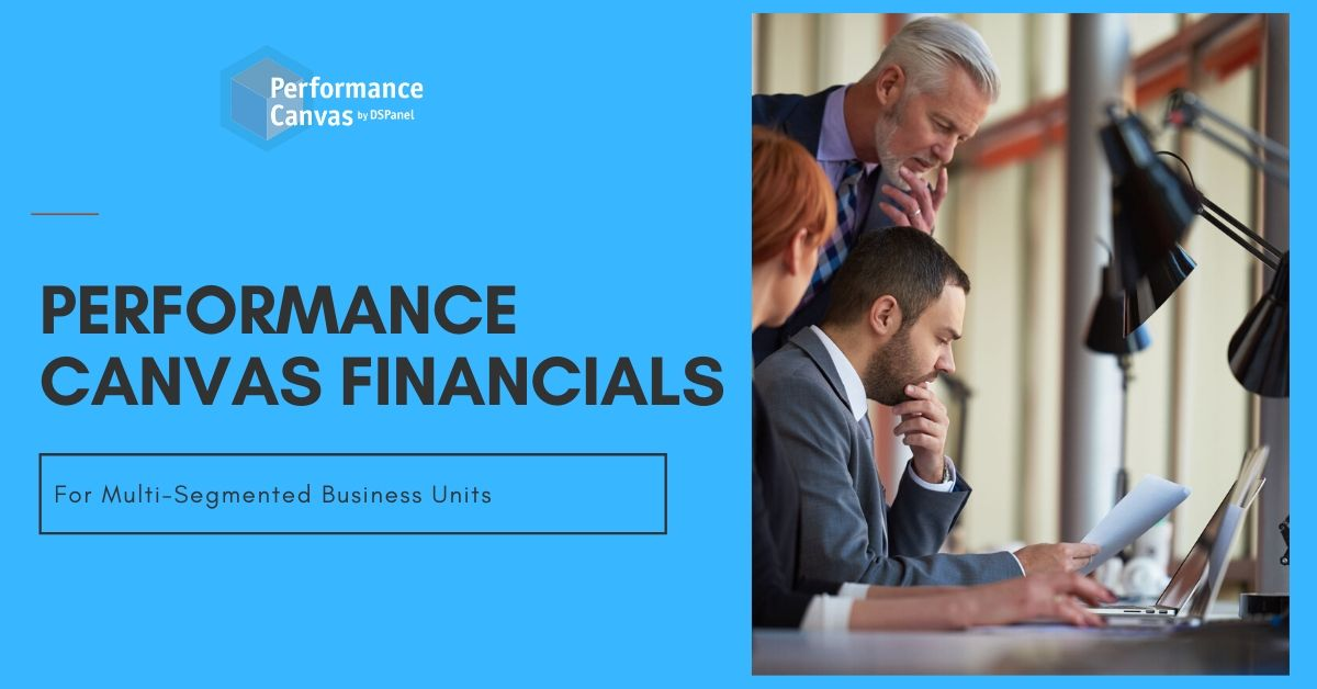 performance canvas financials for multi-segmented business units